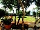 Apartmani Villa Margarita