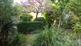 Apartmani Vila Arboretum