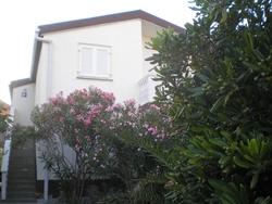 Apartmani Ruža